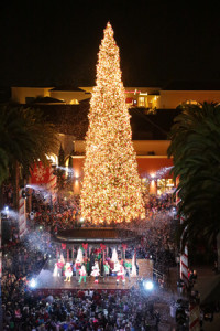 fashion island tree