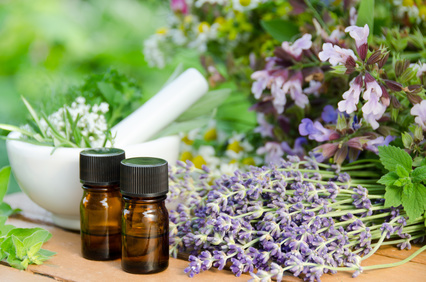 Home Made Hints for a Great Smelling House