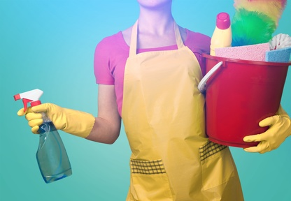 pre holiday deep cleaning, Orchid, pre Holiday cleaning vero beach pre holiday cleaning johns island